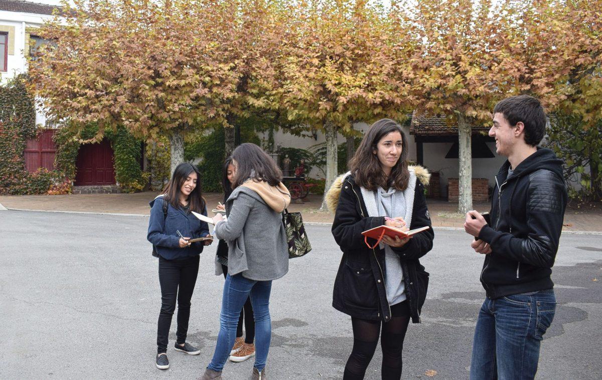 Estudiantes de arquitectura diseñarán la etiqueta 'más artística' de CVNE 3