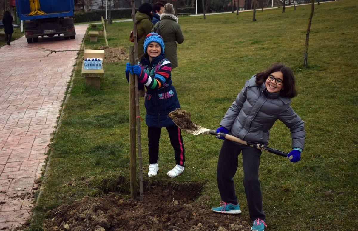 Las imágenes de la plantación de árboles donados por Muebles Guerra 2