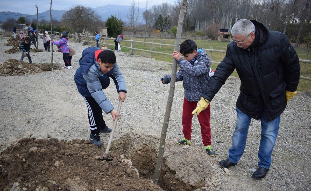 Las imágenes de la plantación de árboles donados por Muebles Guerra 5
