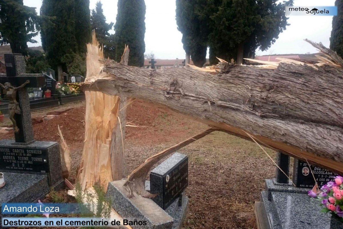 Los destrozos que ha dejado el temporal de viento 6