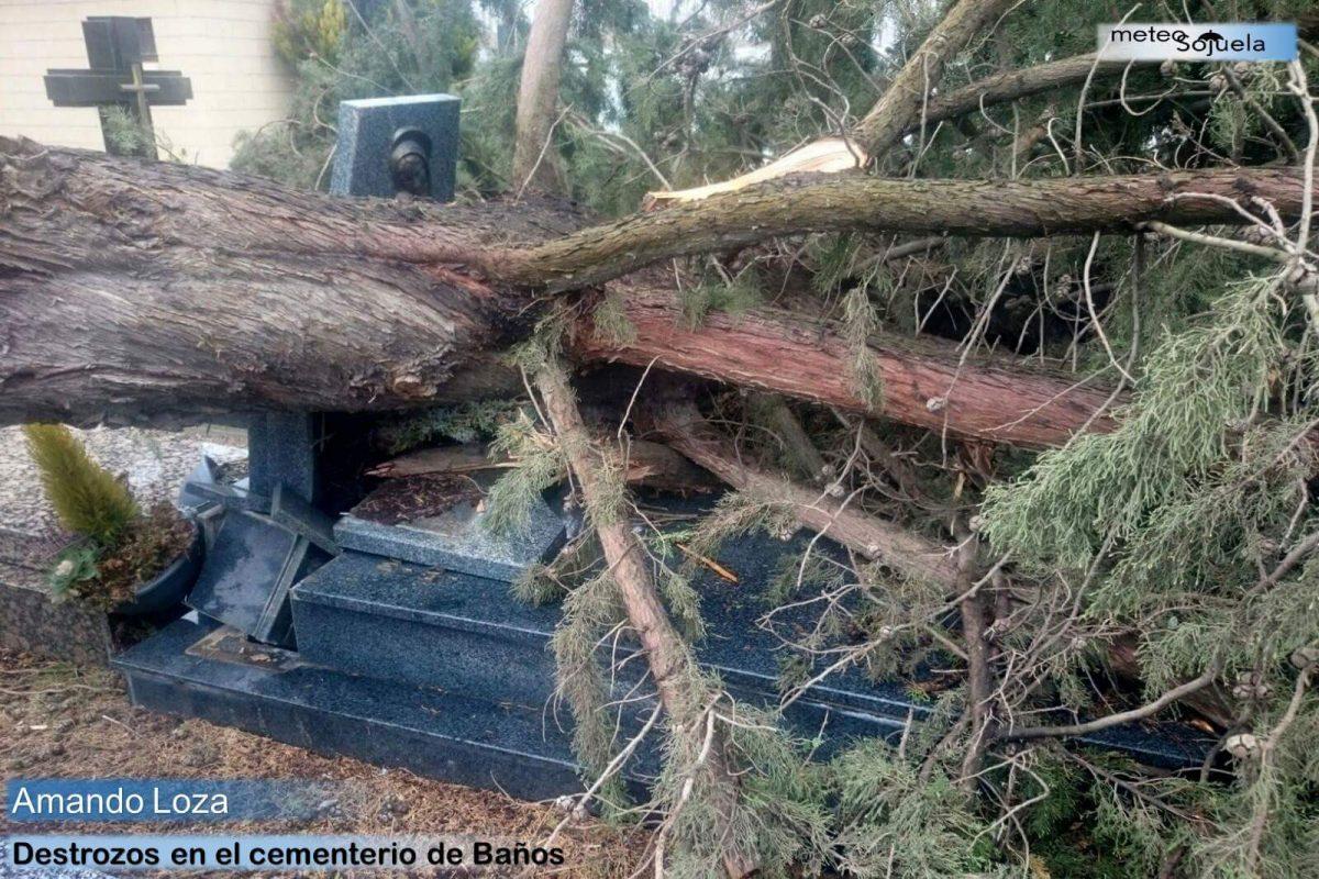 Los destrozos que ha dejado el temporal de viento 5