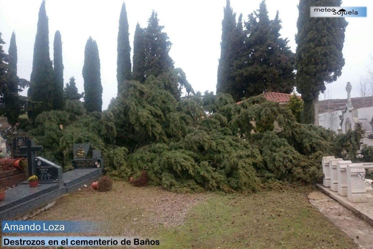 Los destrozos que ha dejado el temporal de viento 4