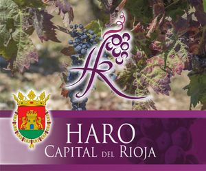 Banner Ayto Haro – Capital del Rioja