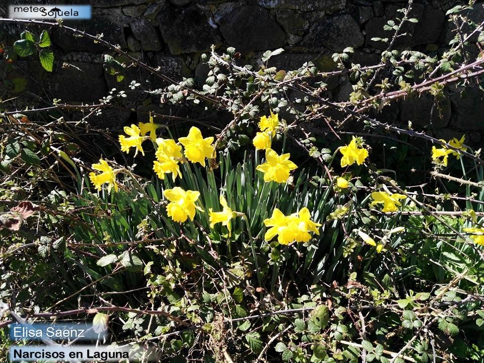 El tiempo invernal estropea el inicio de la primavera 4