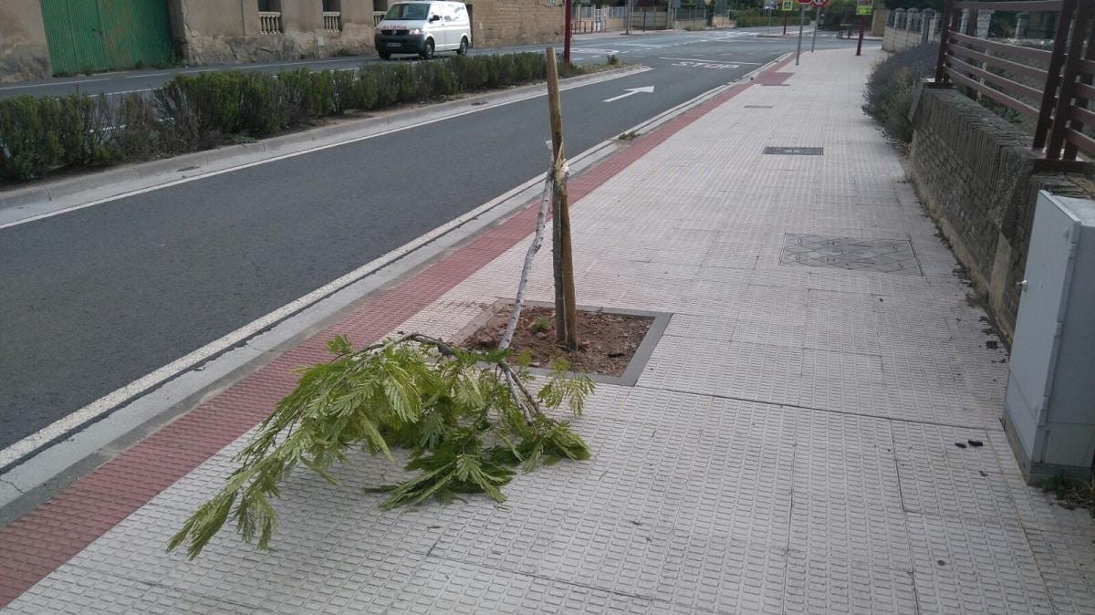 El Ayuntamiento de Haro pide civismo ante la oleada de actos vandálicos 4
