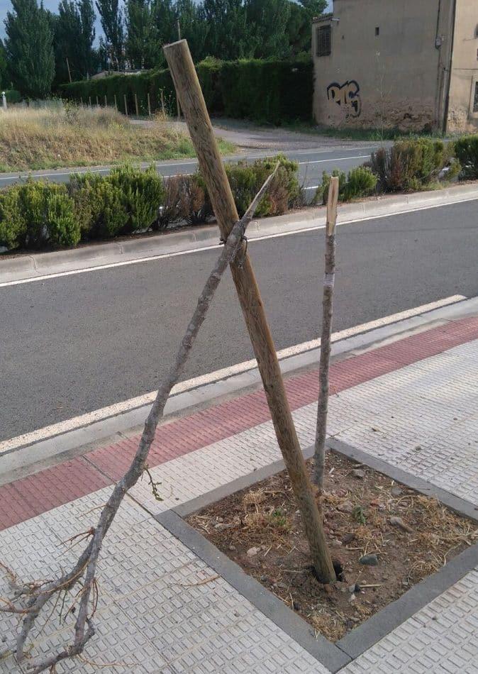 El Ayuntamiento de Haro pide civismo ante la oleada de actos vandálicos 6