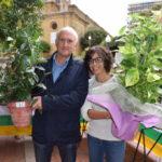 Concursos y actividades para todos los públicos en los Jardines de la Vega 4