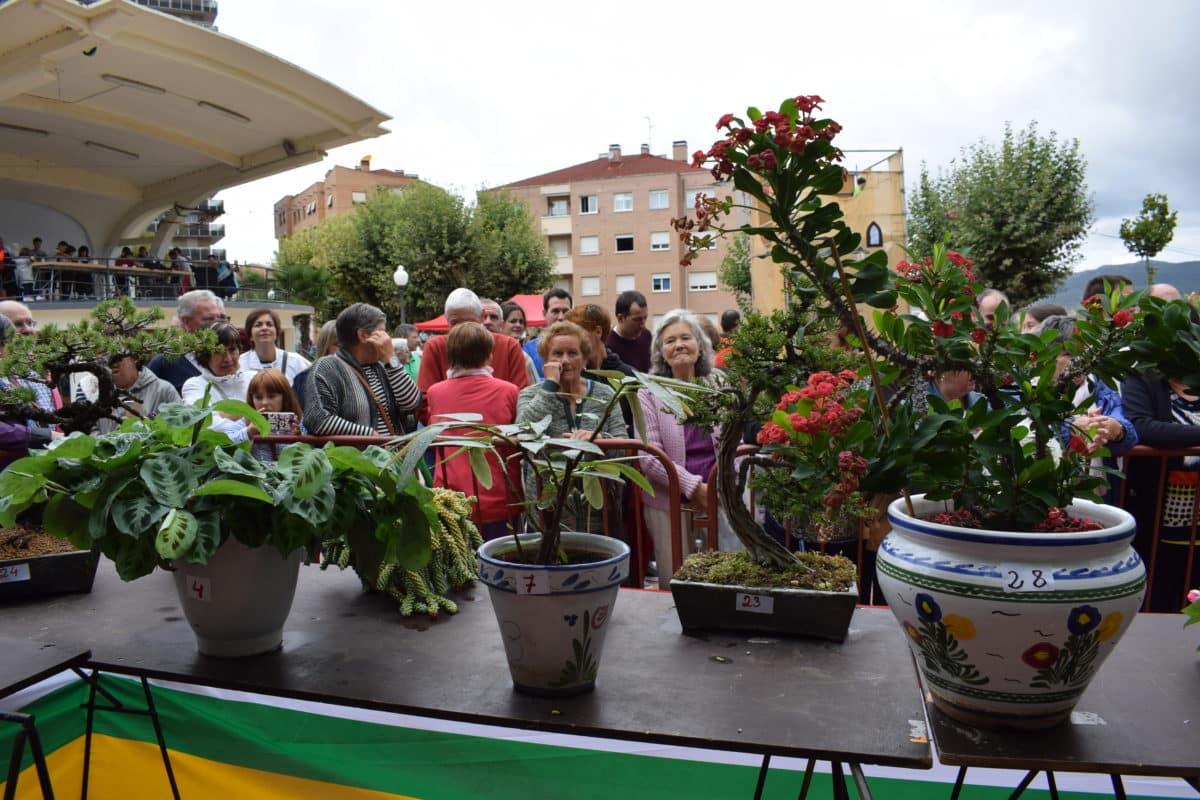 Concursos y actividades para todos los públicos en los Jardines de la Vega 30