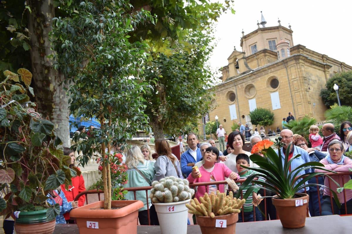 Concursos y actividades para todos los públicos en los Jardines de la Vega 31