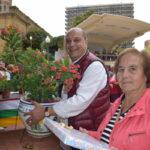 Concursos y actividades para todos los públicos en los Jardines de la Vega 10