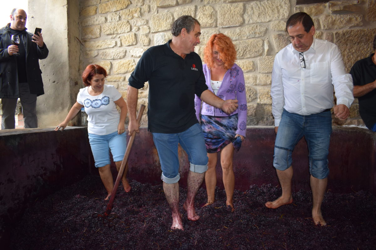 La fiesta del pisado de la uva de Bodegas Lecea 13