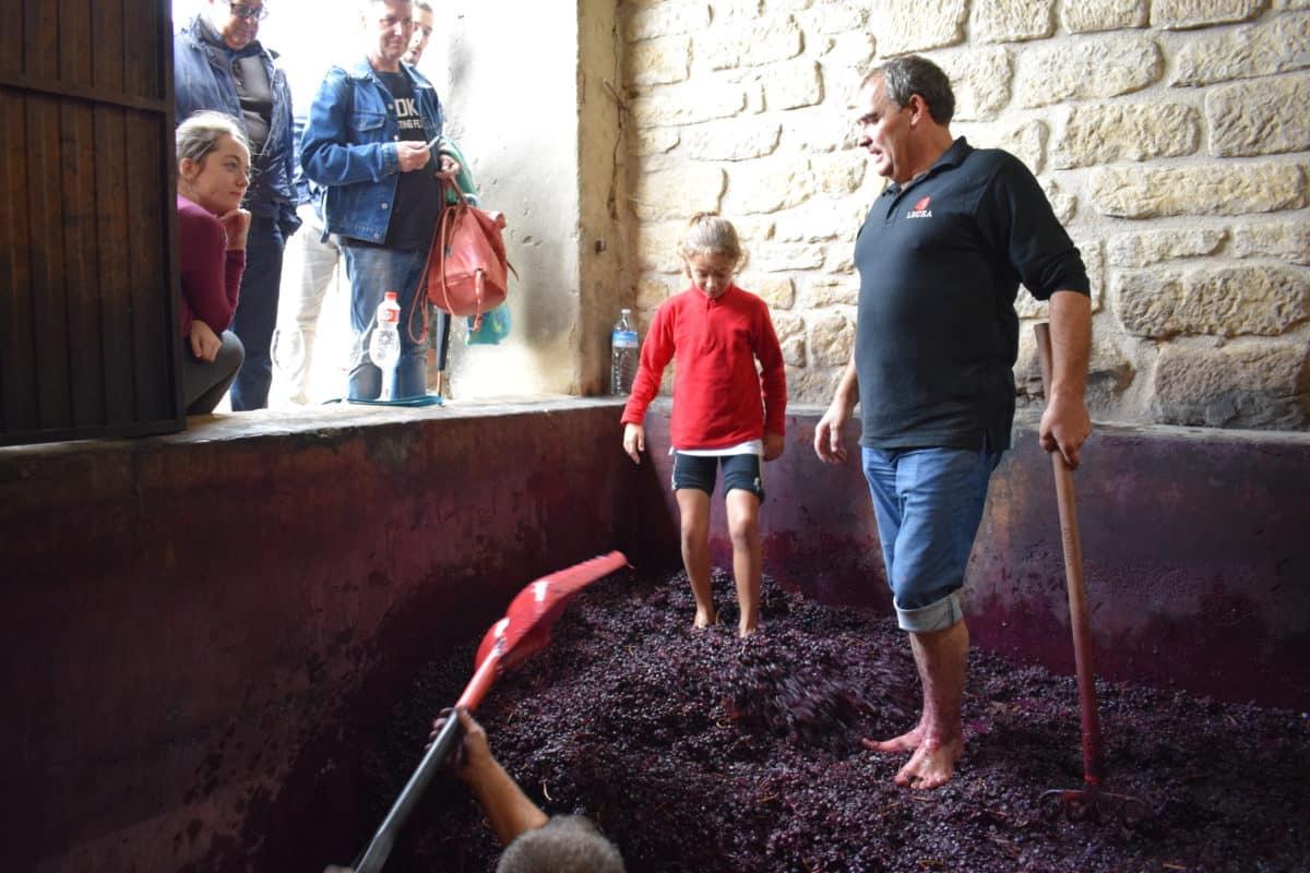 La fiesta del pisado de la uva de Bodegas Lecea 17
