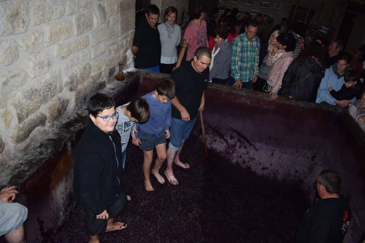 La fiesta del pisado de la uva de Bodegas Lecea 2