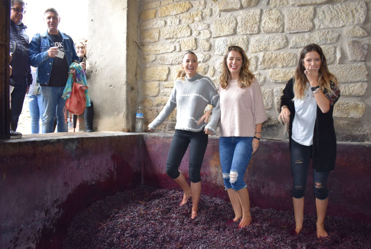 La fiesta del pisado de la uva de Bodegas Lecea 20