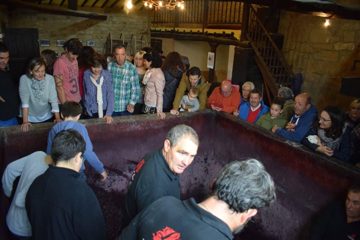 La fiesta del pisado de la uva de Bodegas Lecea 3