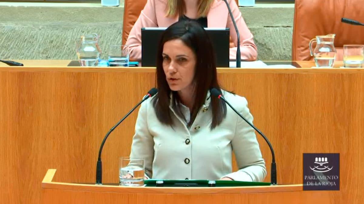 Apoyo unánime del Parlamento riojano a la ILP en defensa del paisaje del viñedo de Haro 1