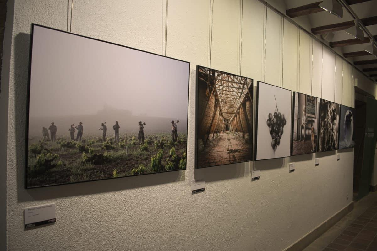 Víctor Manuel Ausín, ganador del XIX Concurso de Fotografía del Rioja y los 5 Sentidos 12