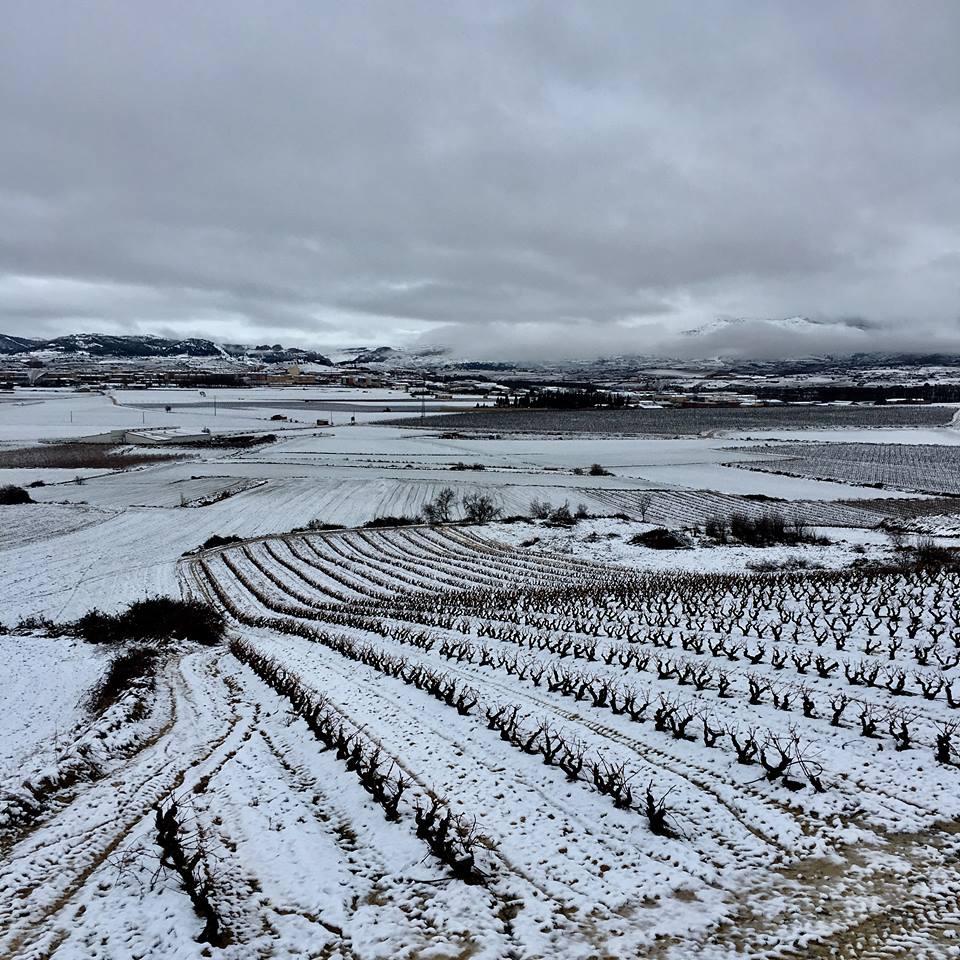 Estampas de la nevada en la Rioja Alta: paisajes vestidos de blanco para despedir la Navidad 22