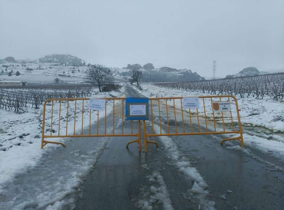 Estampas de la nevada en la Rioja Alta: paisajes vestidos de blanco para despedir la Navidad 23