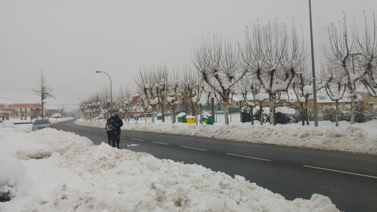 Estampas de la nevada en la Rioja Alta: paisajes vestidos de blanco para despedir la Navidad 2