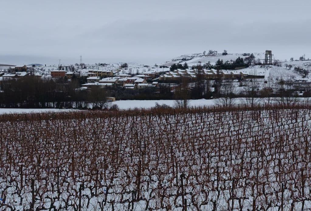 Estampas de la nevada en la Rioja Alta: paisajes vestidos de blanco para despedir la Navidad 26