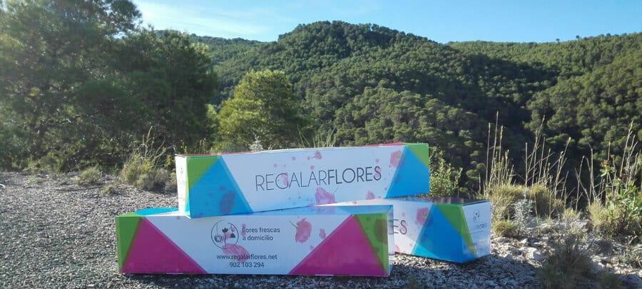 Con Regalarflores.net, enviar flores a domicilio nunca fue tan fácil 1