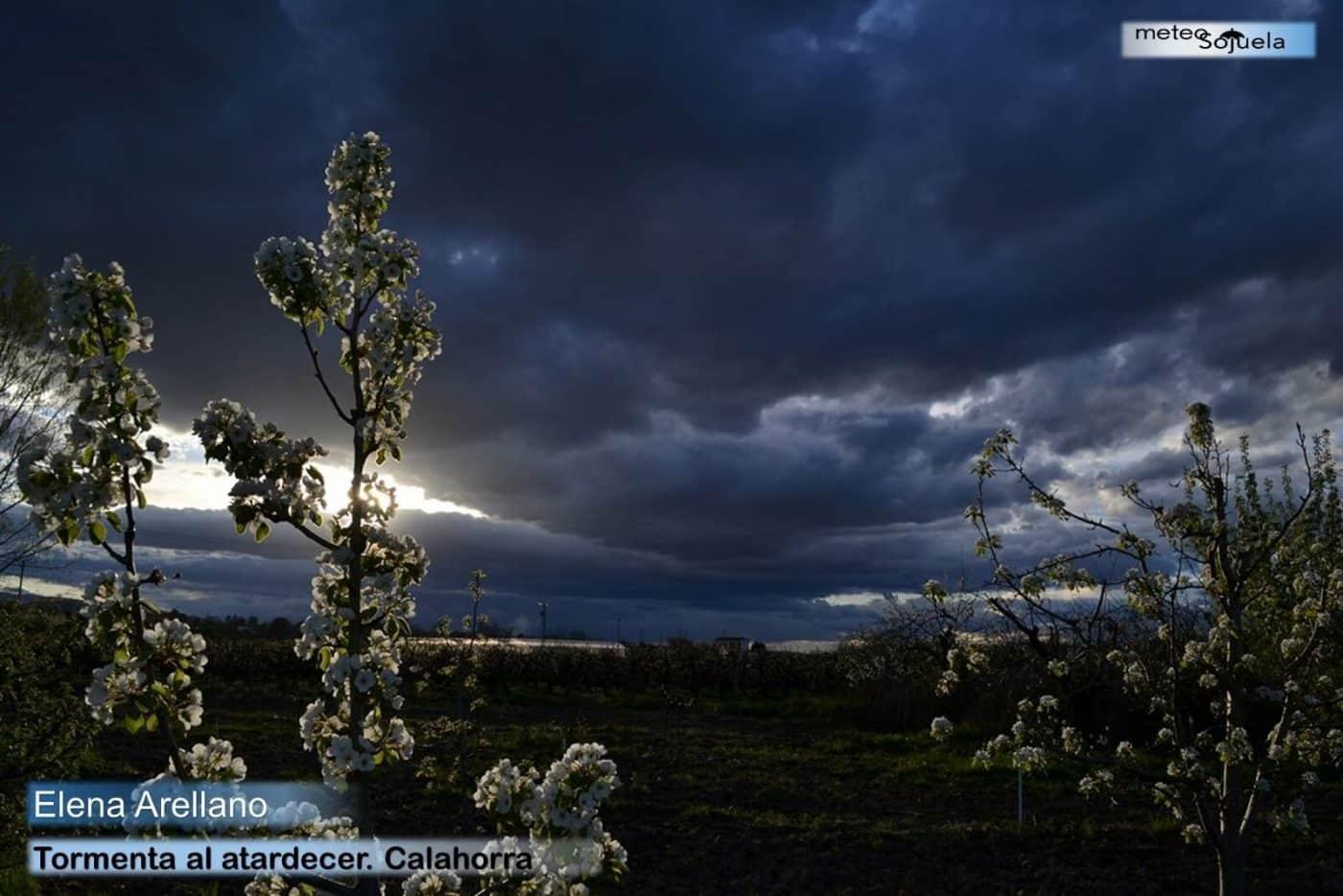El tiempo primaveral y casi veraniego se instala en La Rioja 6
