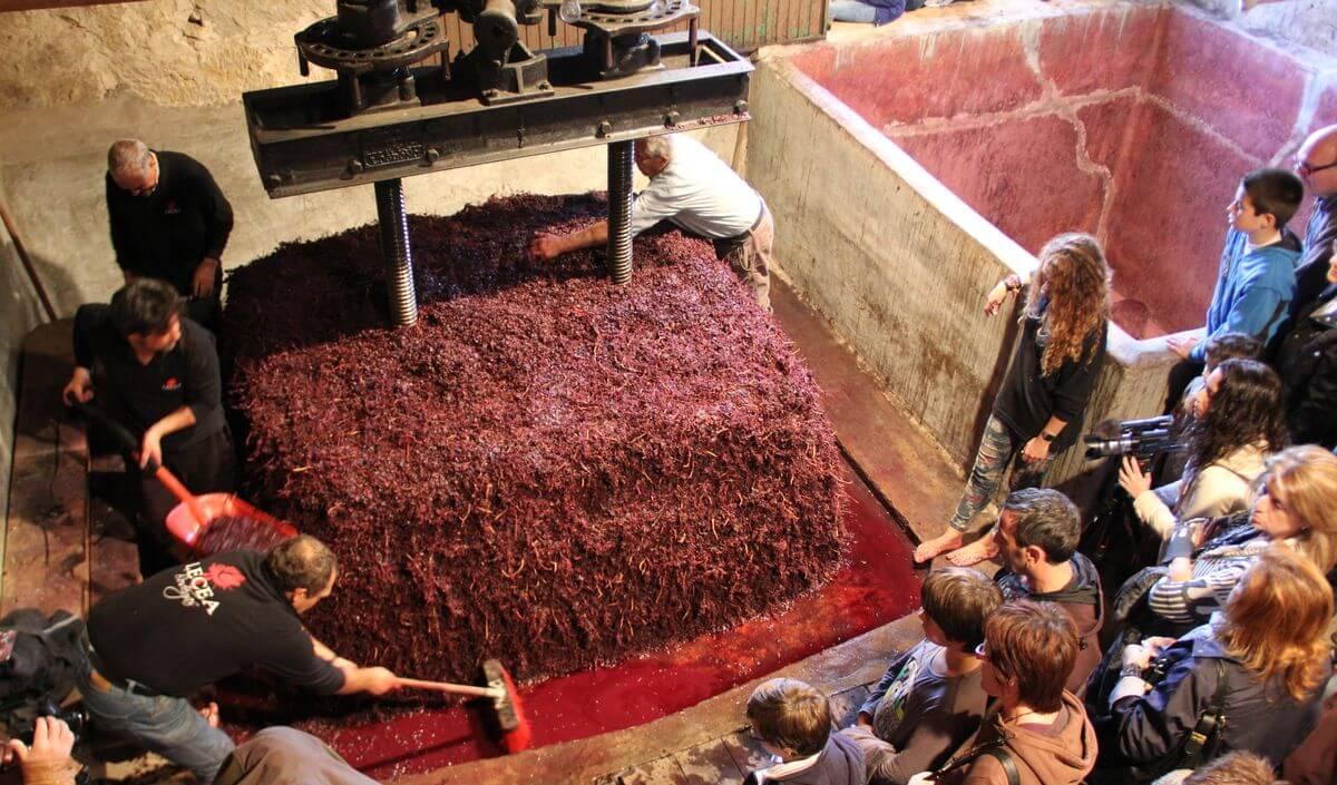 Los barrios de bodegas, un tesoro aún por explotar en La Rioja 2