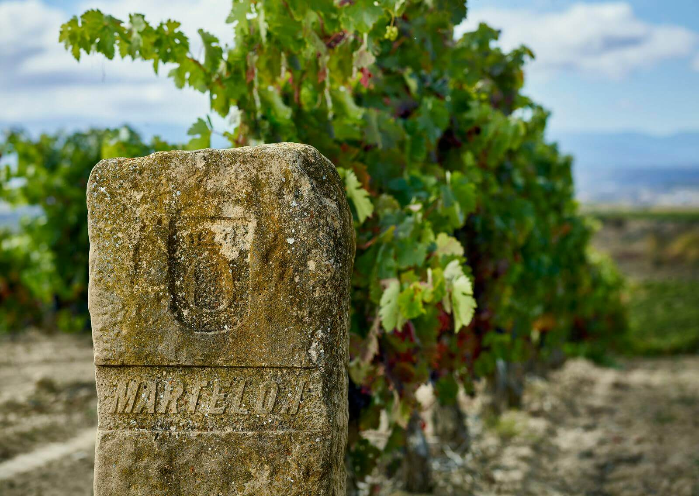 Martelo, un soplo de aire fresco en Rioja Alavesa 2
