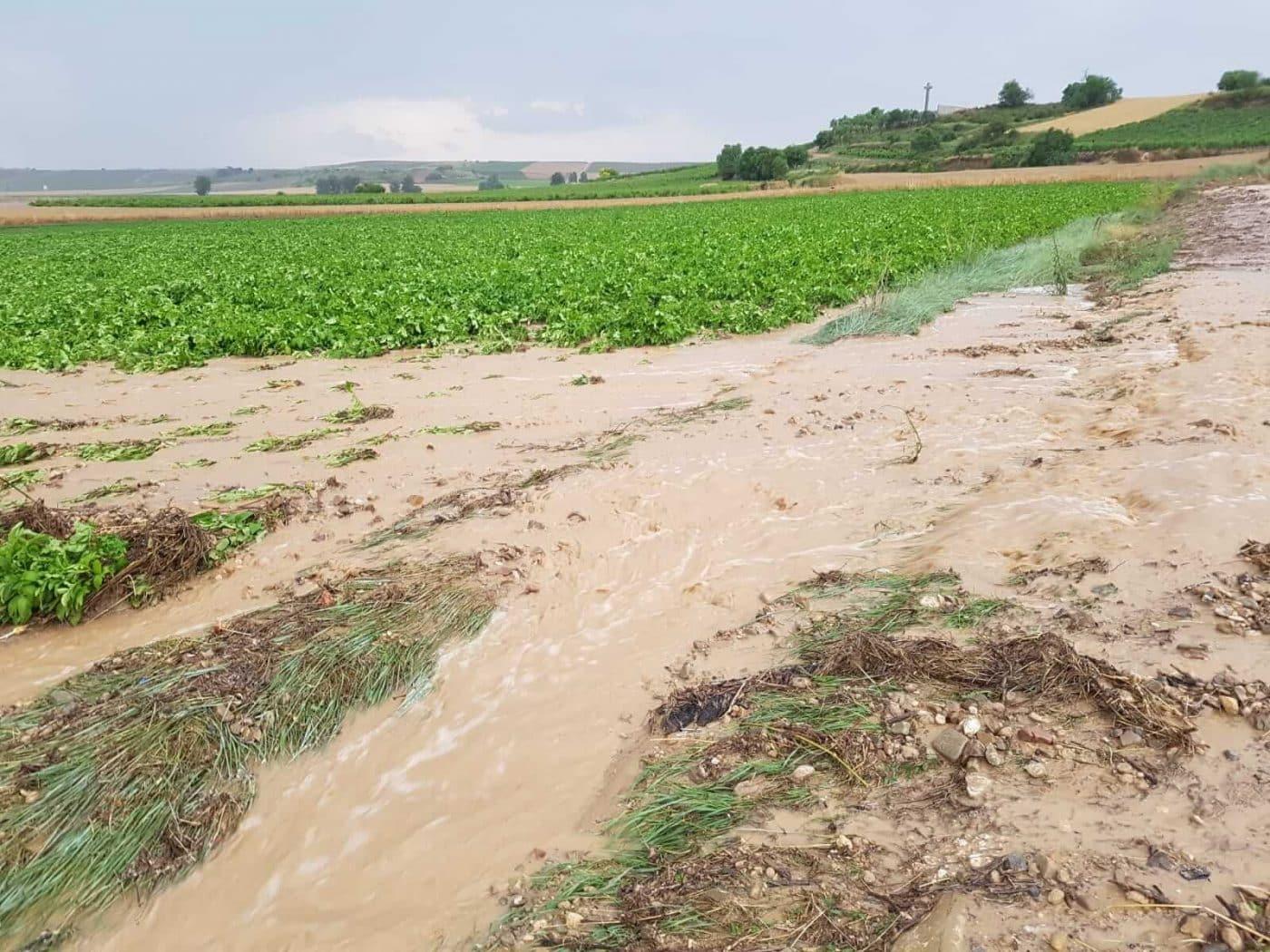 Tormentón en La Rioja Alta: hasta 16 incidencias registradas por SOS Rioja 12