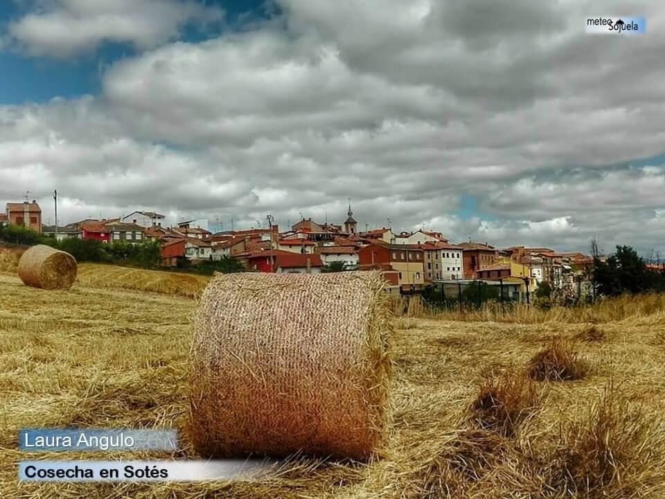 Tiempo veraniego en La Rioja para esperar la entrada del otoño 7
