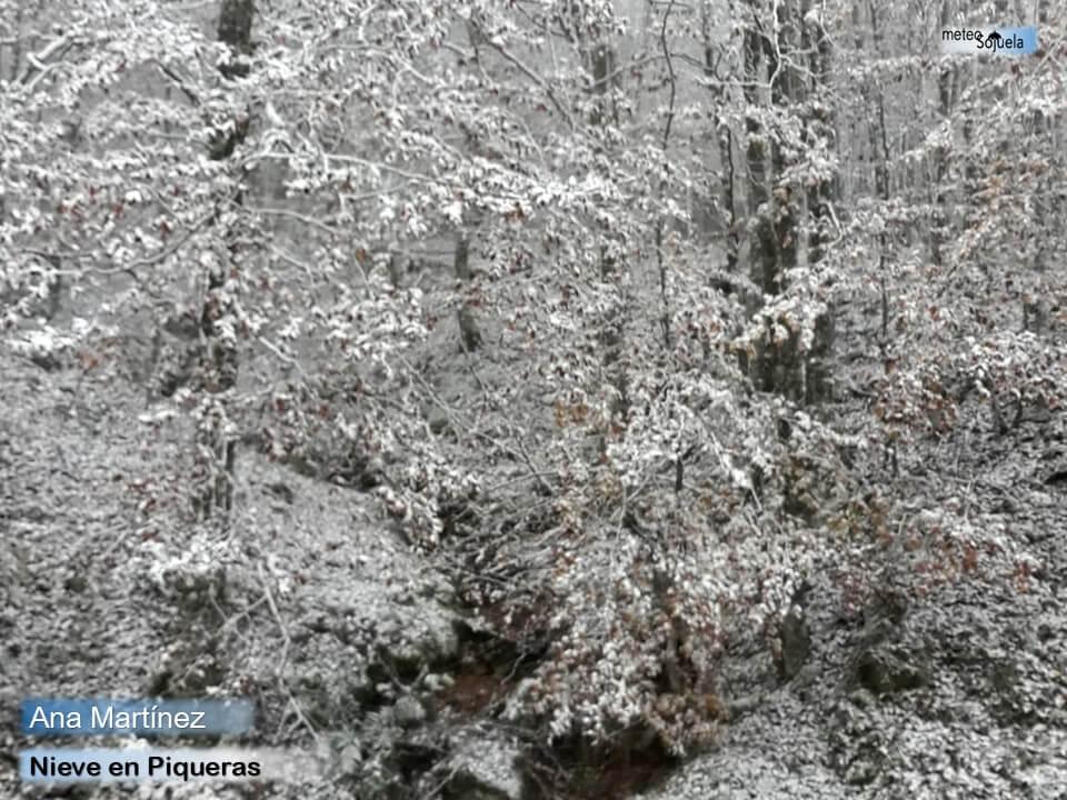 Las imágenes de la primera gran nevada del otoño en La Rioja 5