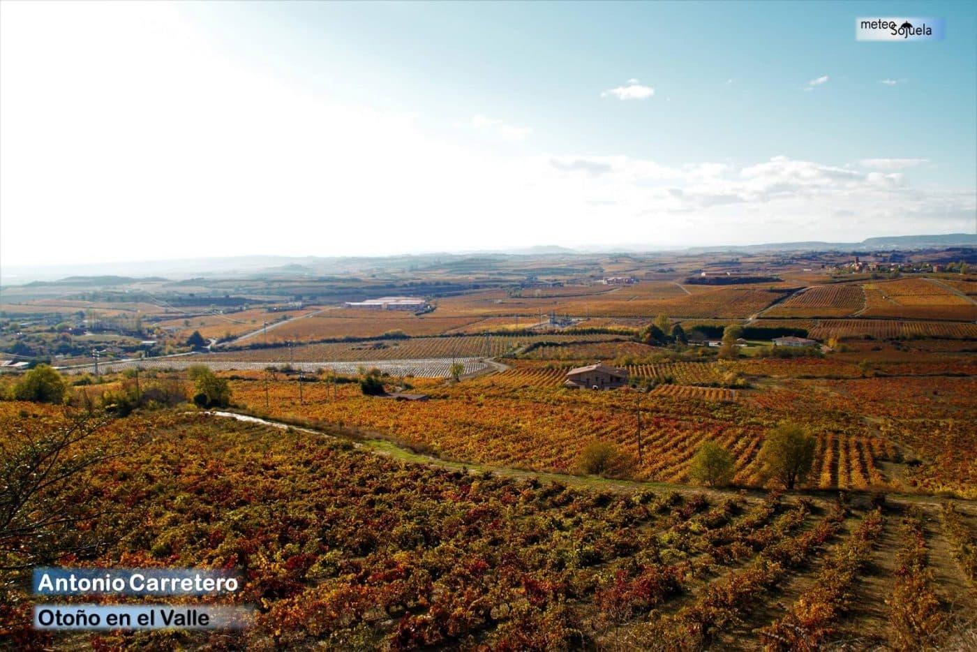 El otoño se instala en La Rioja Alta con temperaturas altas para esta época 3