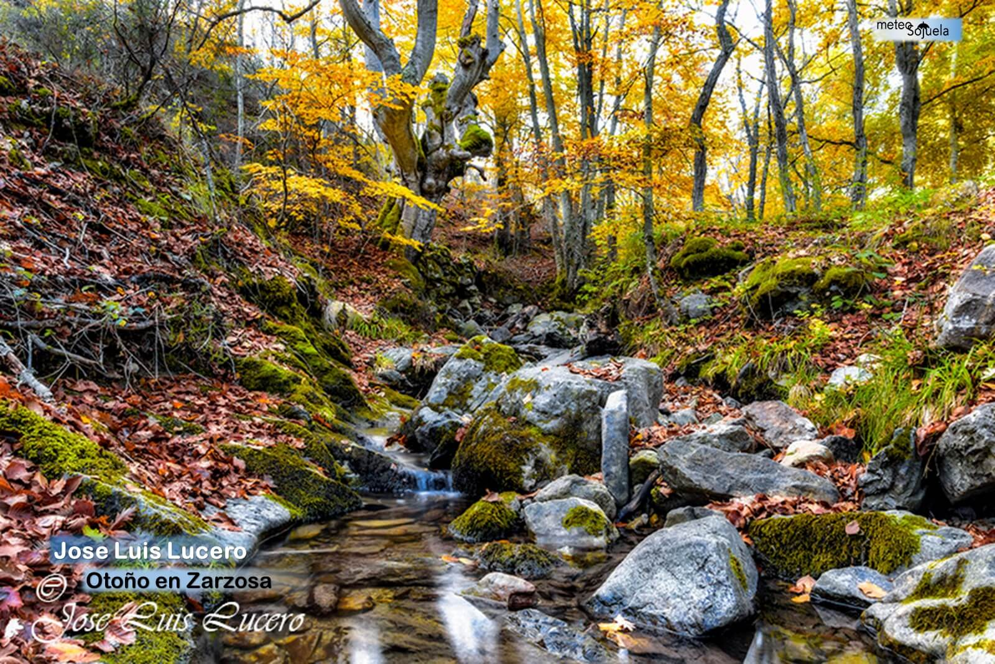 El otoño se instala en La Rioja Alta con temperaturas altas para esta época 8