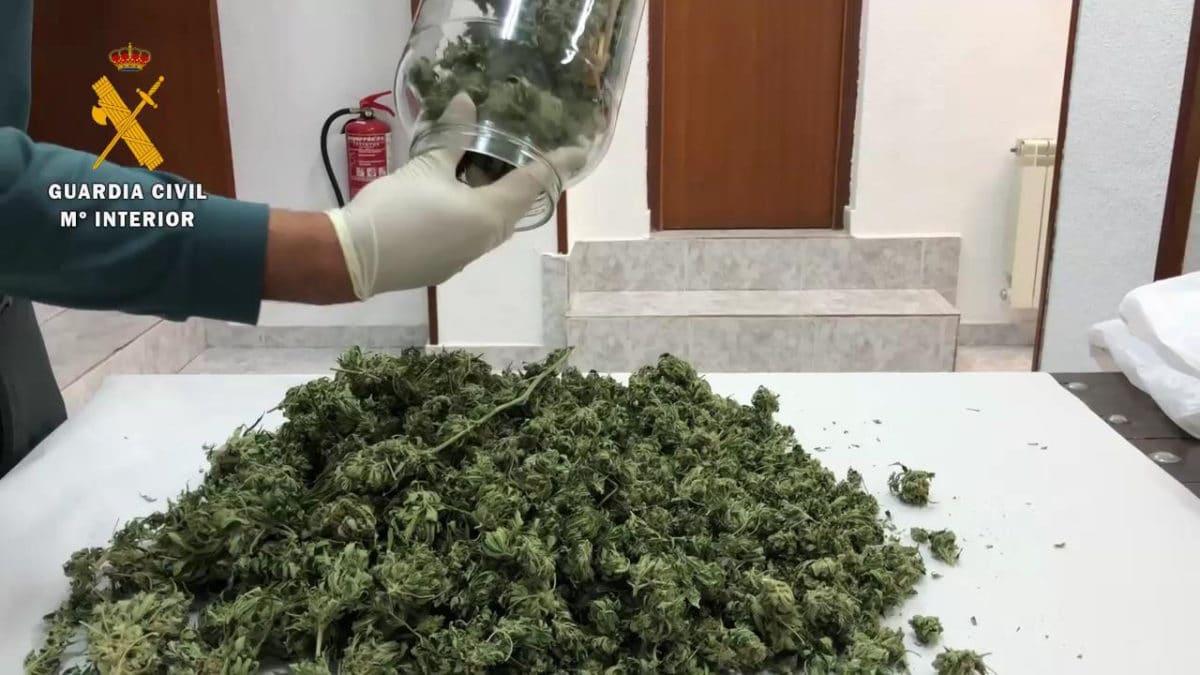 La Guardia Civil detiene a una persona por cultivo y elaboración de droga en Baños de Río Tobía 4