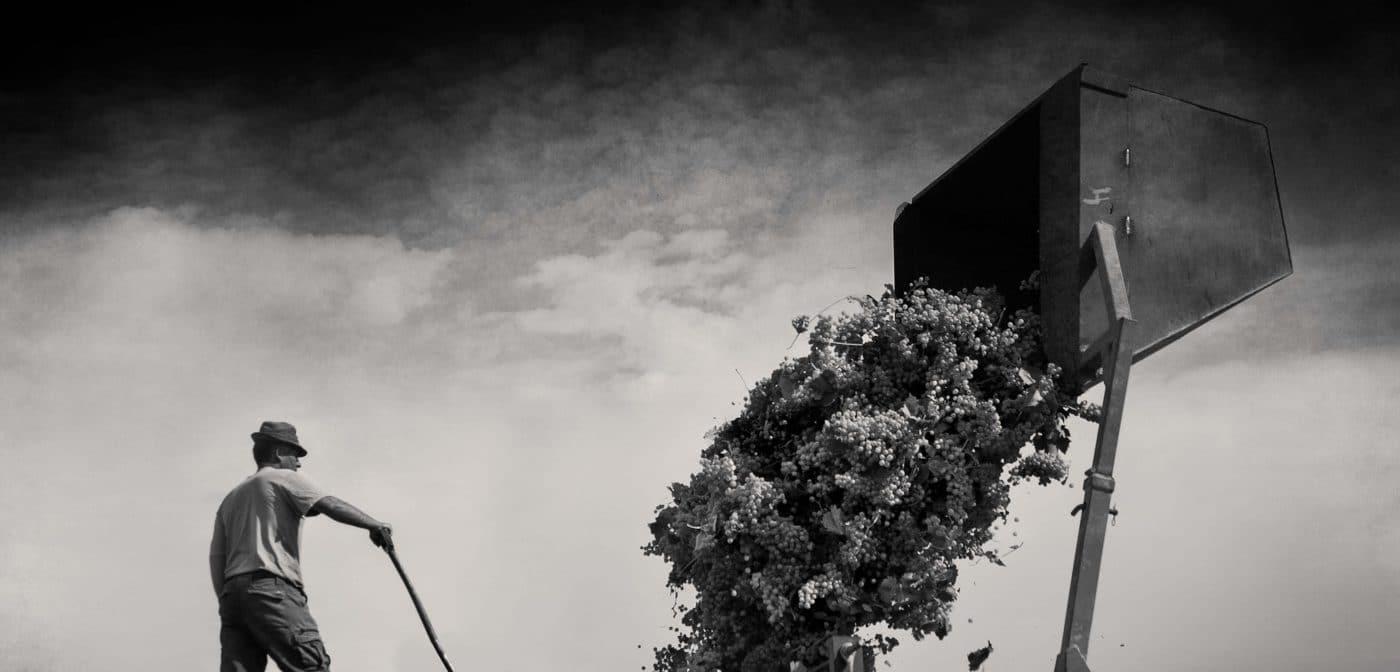 La obra 'Cuéntame' de Javier Muro, primer premio del XX Concurso de Fotografía de El Rioja y los 5 Sentidos 4