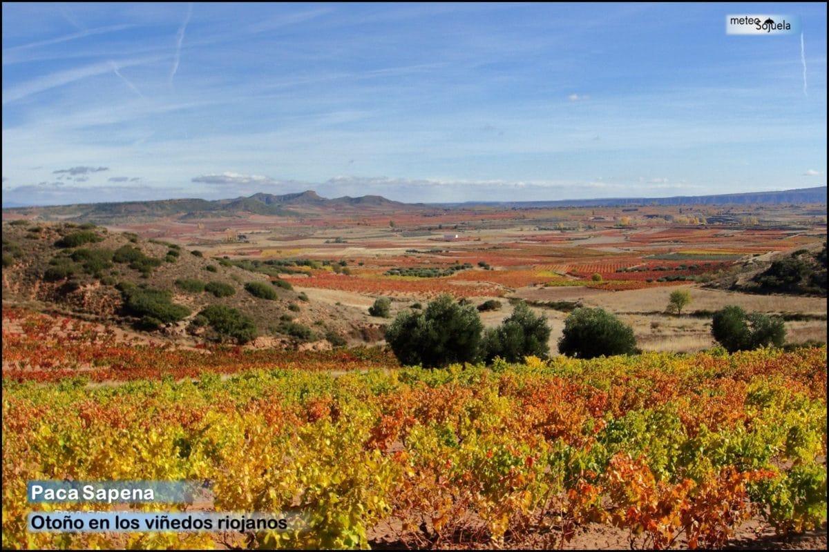 Estampas del otoño en La Rioja Alta: continúa el tiempo estable 6