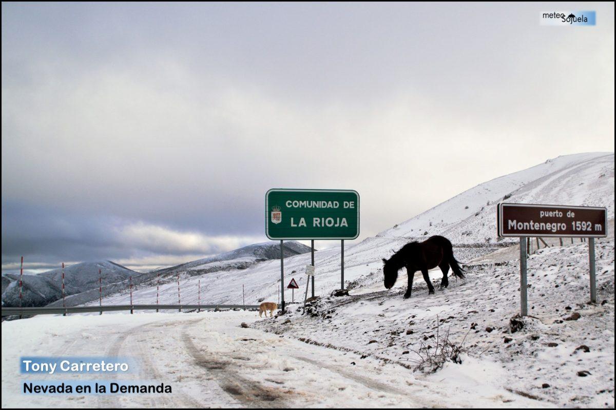 El frío llega para quedarse en La Rioja Alta 7