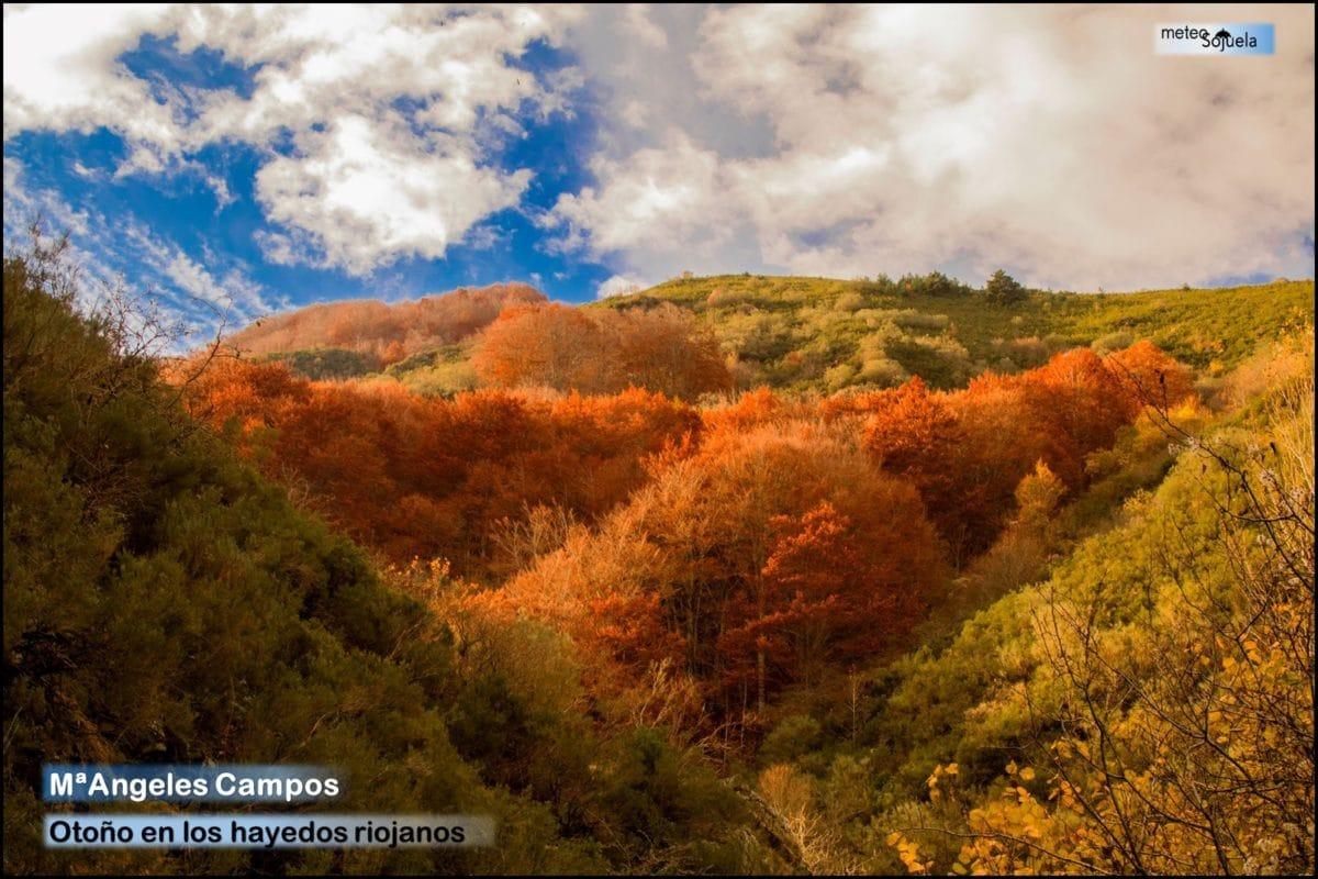 Regresan el frío y las precipitaciones a La Rioja Alta 6