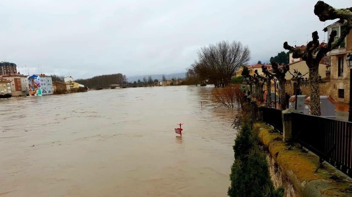 La crecida del Ebro provoca anegamientos en Haro y en Briñas 4