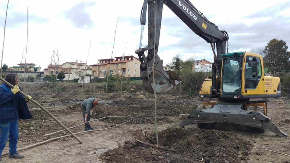 Anguciana planta 2.000 árboles para repoblar la chopera del Tirón 5