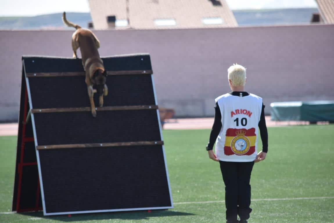 Ceo de Ydre y su guía Xerach García, campeones en Haro de la Copa de España 16