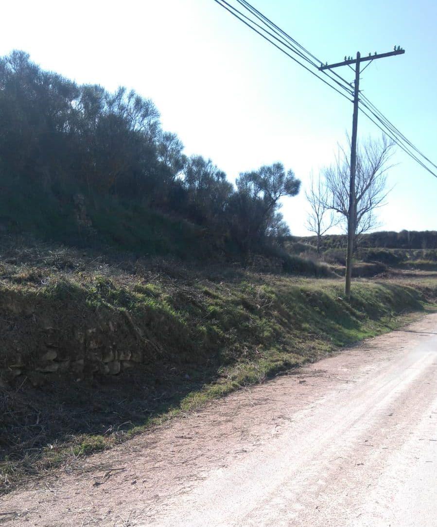 El Ayuntamiento de Haro lleva a cabo tareas de limpieza y desbroce en el camino a Briñas 1