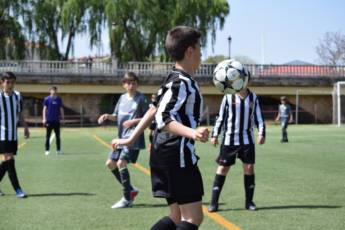 El Haro Sport Club, campeón del torneo alevín Haro Capital del Rioja 44