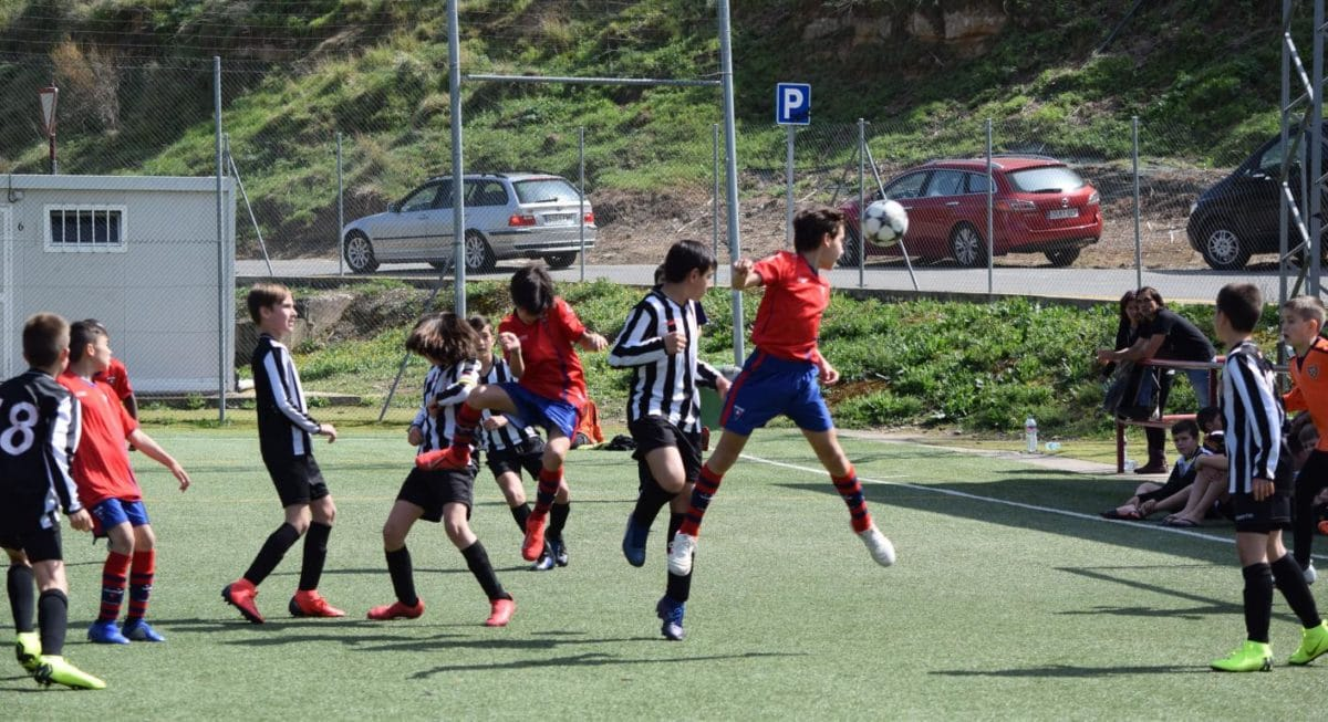 El Haro Sport Club, campeón del torneo alevín Haro Capital del Rioja 6