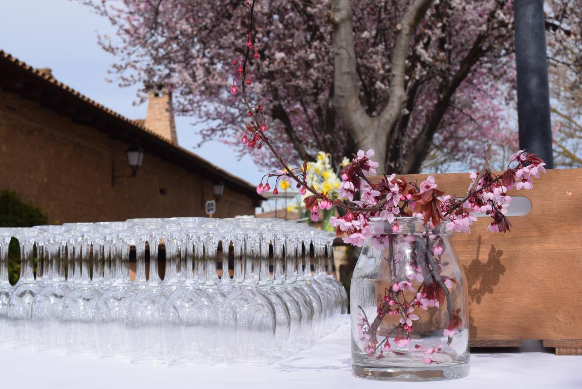 La Vieja Bodega de Casalarreina pone en marcha la nueva temporada de celebraciones 14
