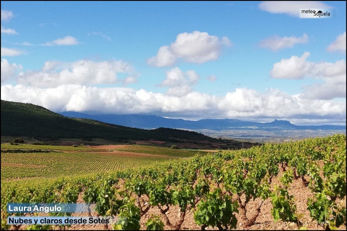 La Rioja Alta vive un verano adelantado: Haro marca la máxima con 31,6 grados 8