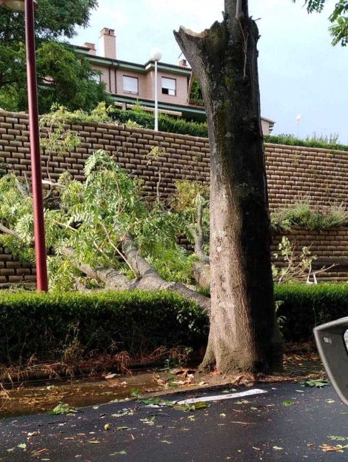 Las tormentas provocan varias incidencias en la comarca de Haro 2