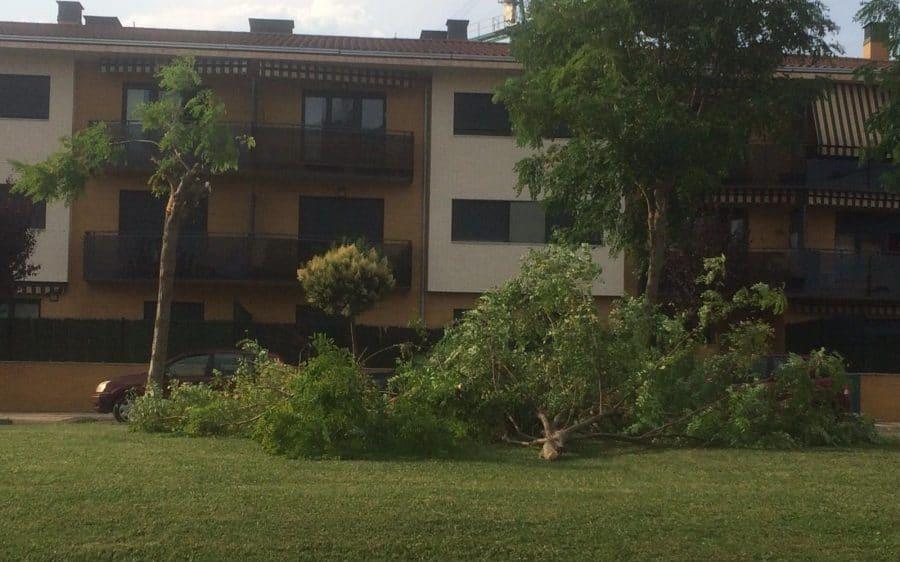 Las tormentas provocan varias incidencias en la comarca de Haro 3