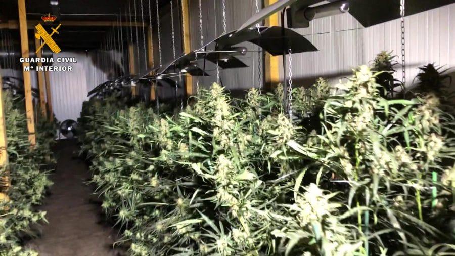 Desmantelado en Haro el mayor laboratorio 'indoor' de marihuana de La Rioja 6